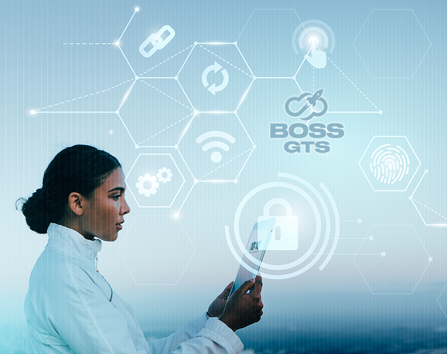 Boss GTS, the I.T company in South Africa that will take you far
